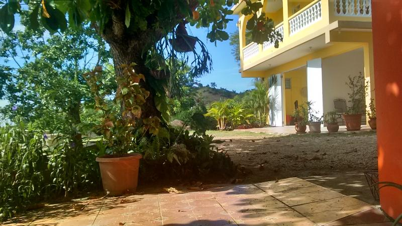 Exterior ....calming garden