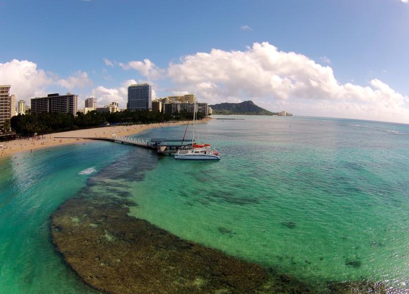 Aqua Palms / Free Parking & WiFi / Close to Beach, vacation rental in Honolulu