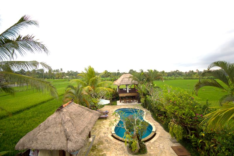 view from backyard balcony