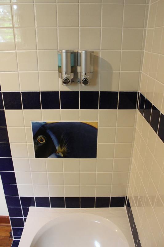 Banheiro da rainha; detalhe do chuveiro