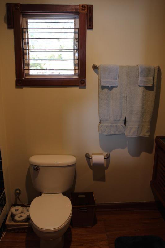 Banheiro para quarto de rainha