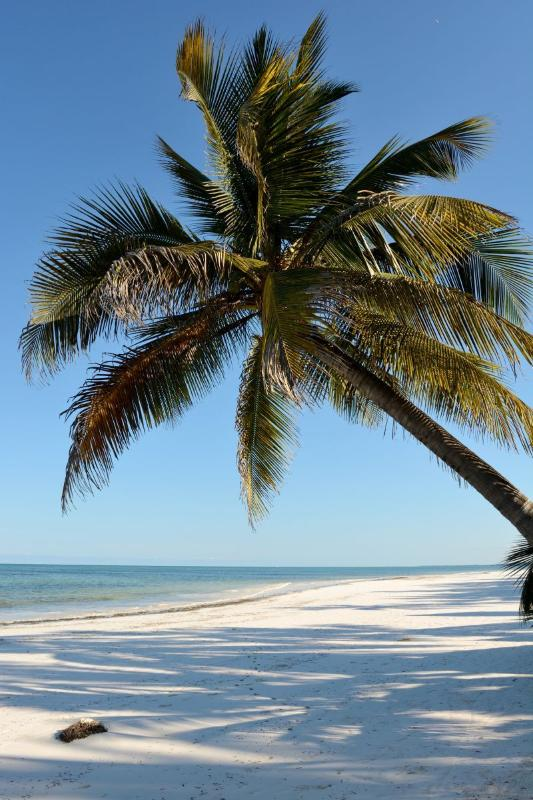 Spiaggia di Matemwe - vista da Hodi Hodi