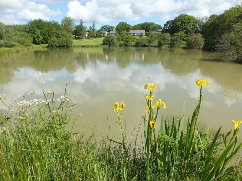 Blagdon Farm: 8 luxury lakeside lodges set in stunning Devon countryside just minutes from the coast