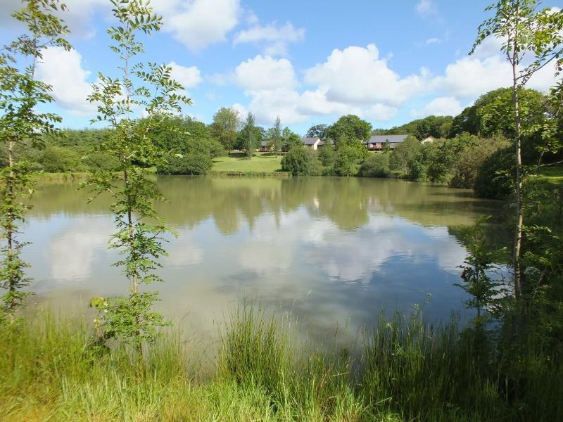 1.5 acre coarse fishing lake, with carp (common, mirror and ghost), rudd, roach, perch and bream.