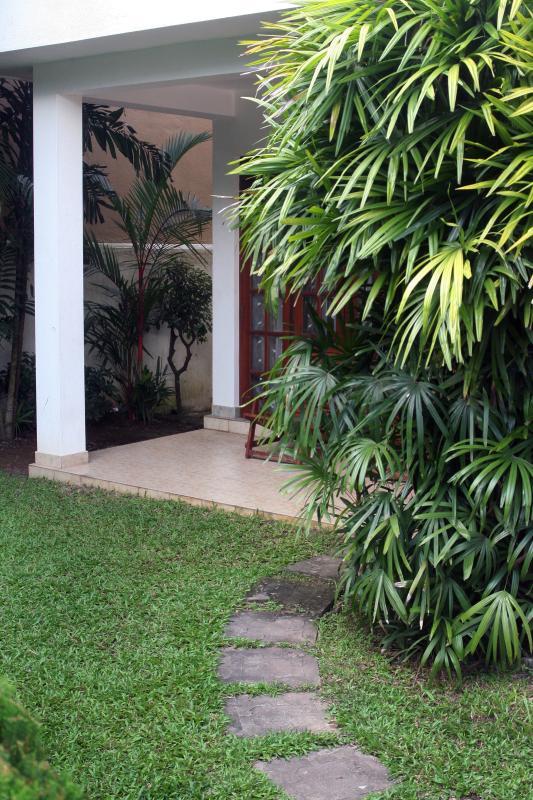 Vue latérale du jardin