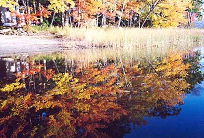lagoa de sete árvore