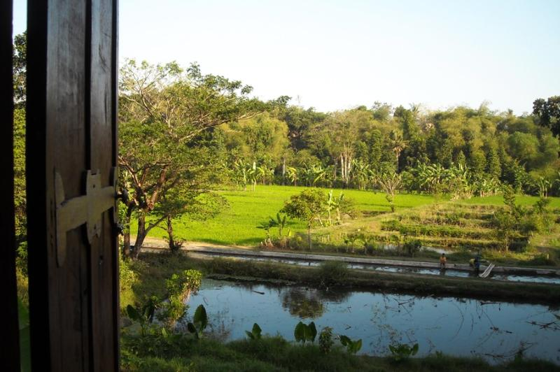 View out of Bungalow Semilir
