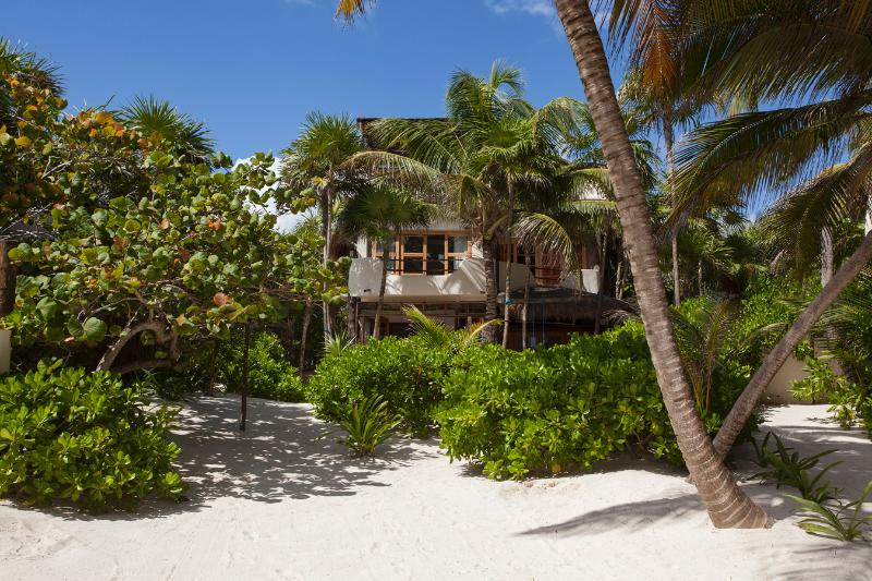 Casa de las Palmas is right on Tulum beach, close to restaurants, spas and shops.
