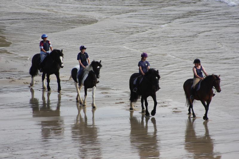 L'équitation sur la plage