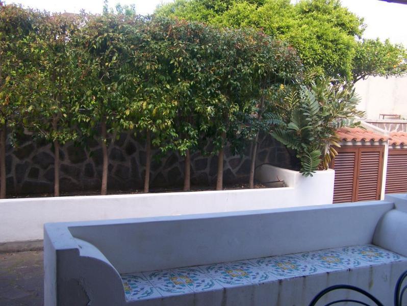 terrazza,giardino