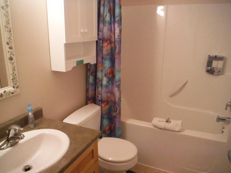 Lavadora y secadora adjoinging el cuarto de baño