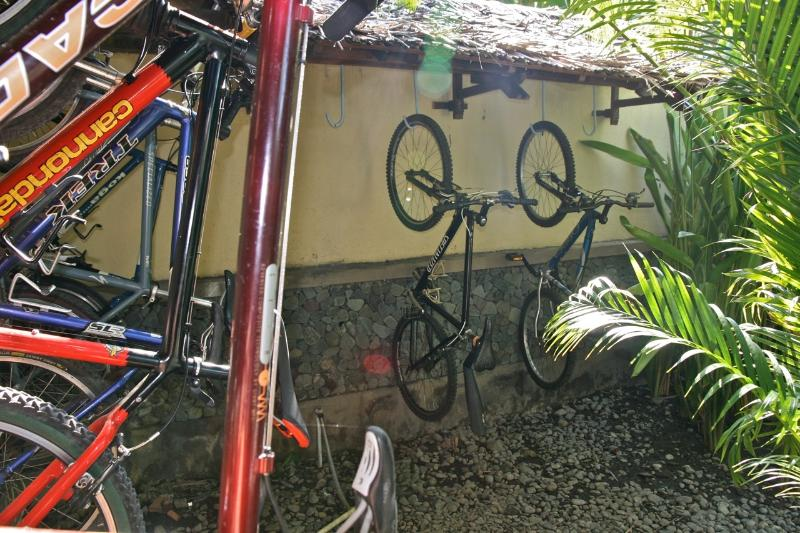 Mountain bikes free to use, Kadek our staff member can show you the back roads.