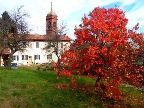 Accanto alla Canonica vi è una chiesetta per matrimoni country
