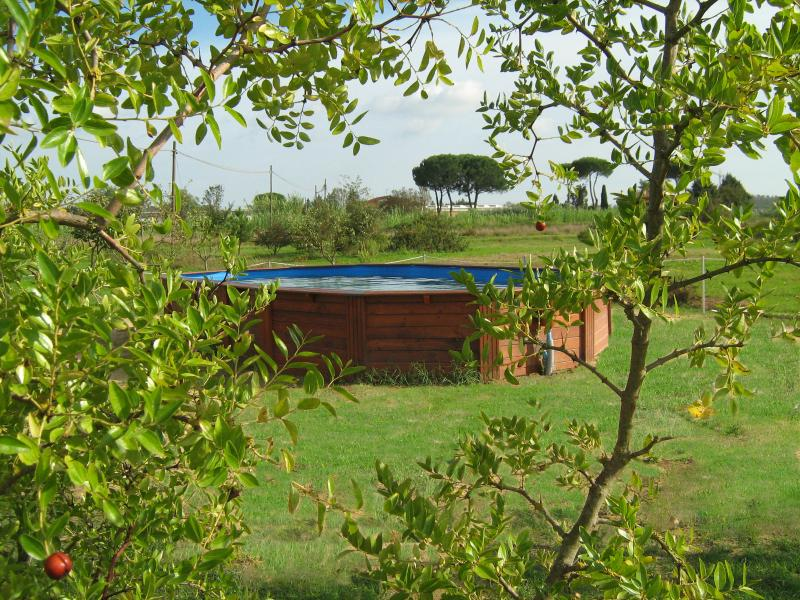 INCANTO TOSCANO - LOTO, vacation rental in Agliana