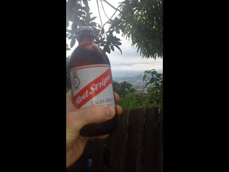 Grab a cold Redstripe Beer under the pear tree nuh