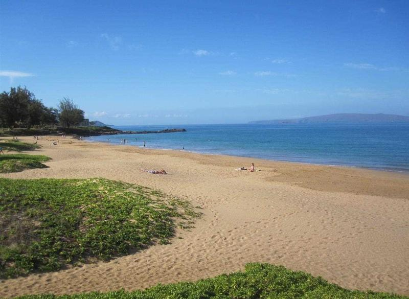 Kam 2 Beach across the street from Kihei Kai Nani Complex (200 yard walking distance from the condo)