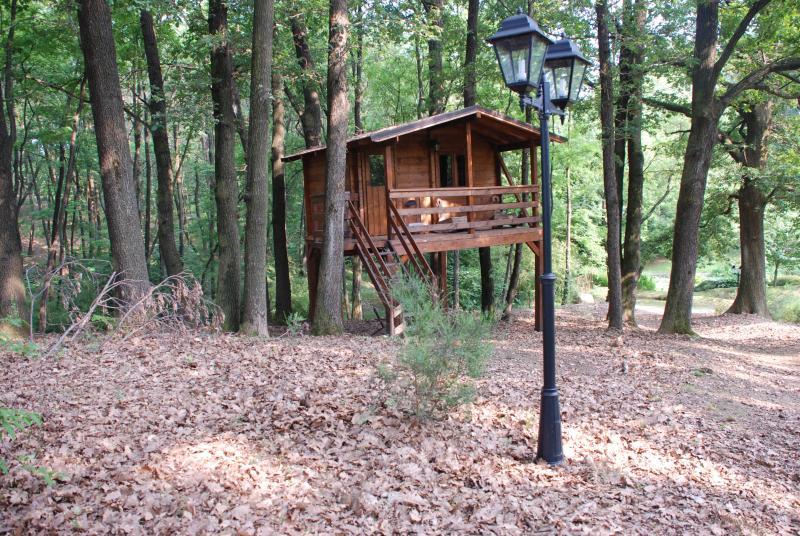 THE TREE HOUSE FAMILY ROOM (2 LETTI) A POCHI METRI  DALLA GREEN HOUSE