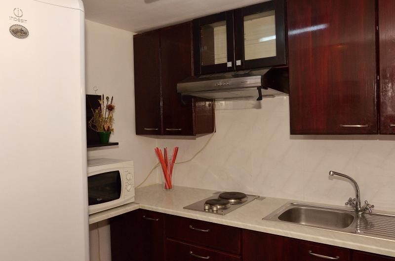 Volledig ingerichte keuken met een koelkast, magnetron, elektrische kookplaat
