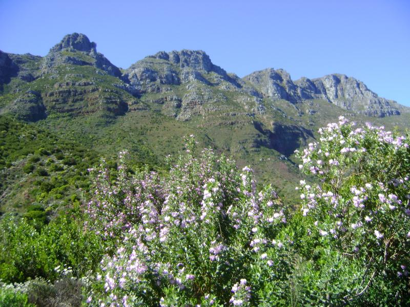 Scenic Chapmans Peak Drive - a short walk from'Cosy Corner Hout Bay'