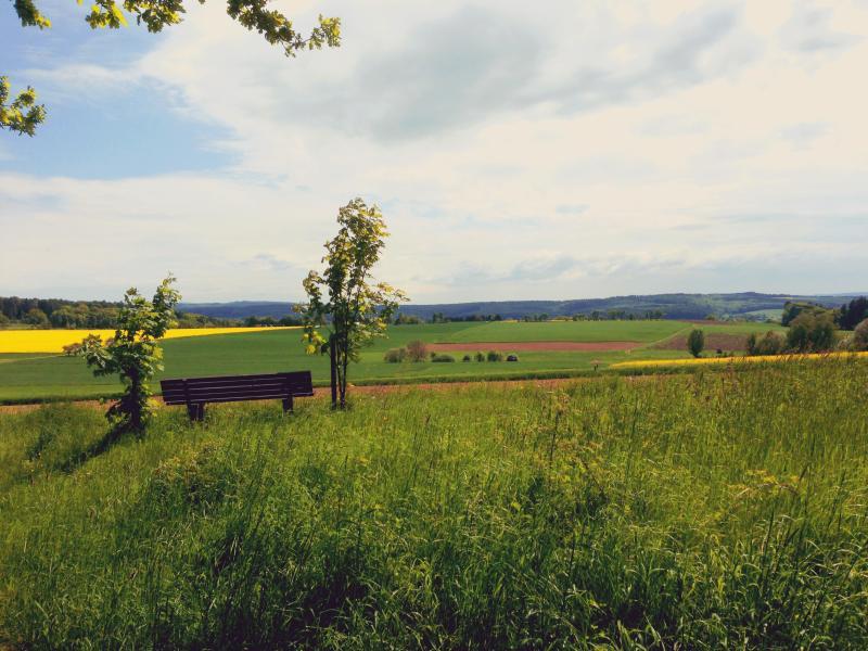 Wandern auf dem Lahnwanderweg