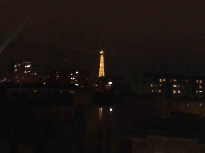 View by night of Eiffel Tower from the flowered bedroom