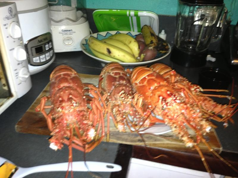 hmmm, gorgeous caribbean lobsters accompanied with beef fillet