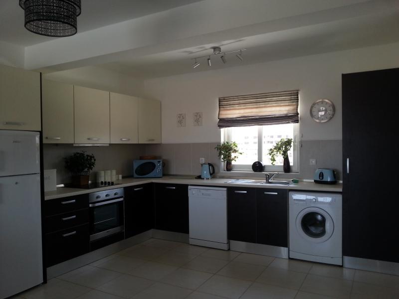 Enormous kitchen washing machine and dish washer