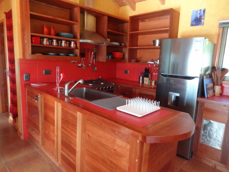 Well-Equipped American-Style Pomegranate Kitchen