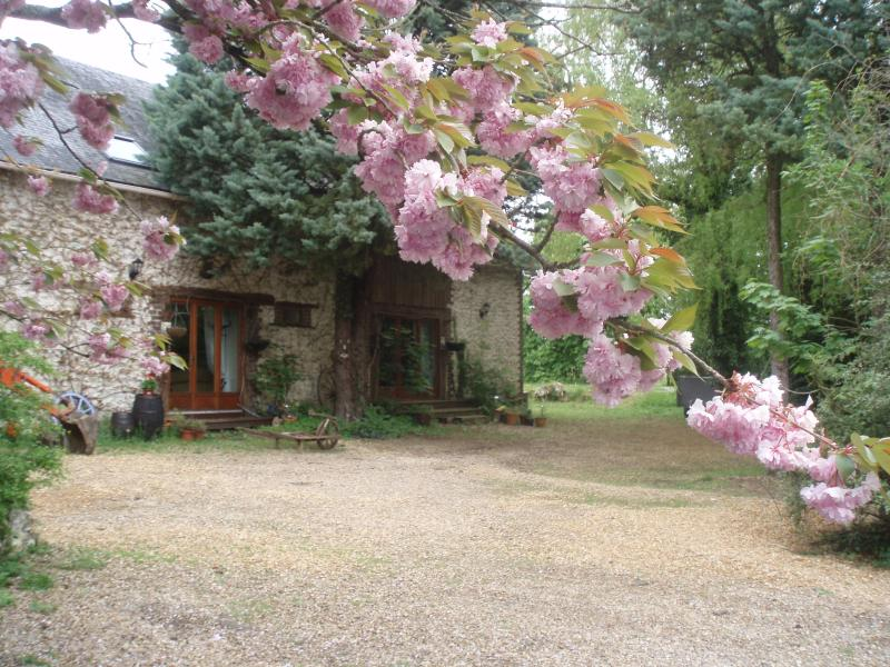 Gite   'Rose', holiday rental in Savigne-sous-le-Lude