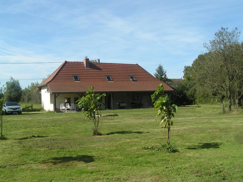 The house + garden