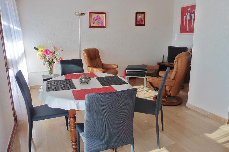 salle à manger,salon confortable ensoleillé, telé cablé, chaine hifi, jeux de socièté,