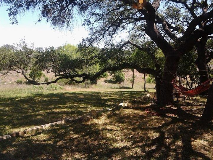 So much shade under the oaks. The backyard is fenced for dogs  and smoking allowed outside