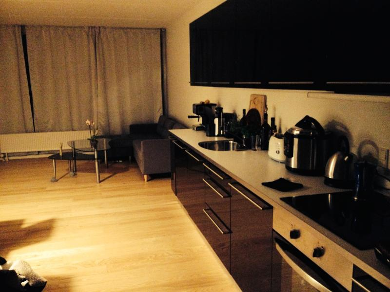 Hi i this amply apartment and relax area, location de vacances à Kokkedal
