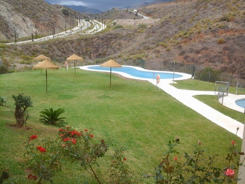 Swimming pools in the shared garden.