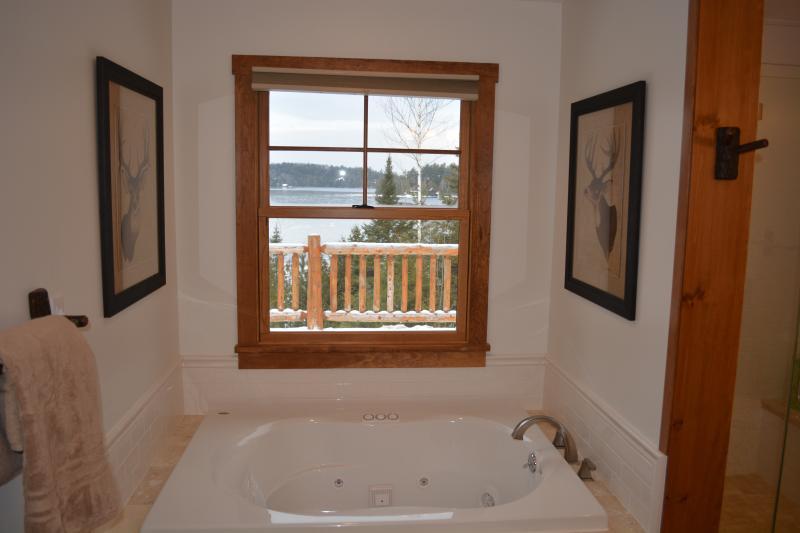 Master bathroom jacuzzi tub with lake views.