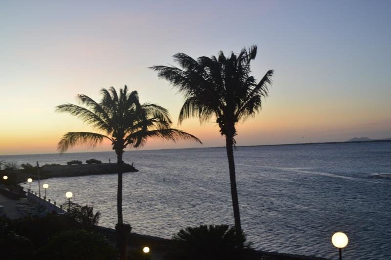 Oceanfront condo with panoramic view.  Palm trees at sunset.