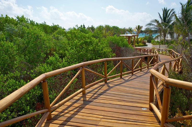 Jungle walkways on resort property