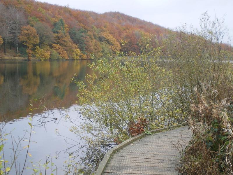 The board walk - Top Reservoir at Linacre