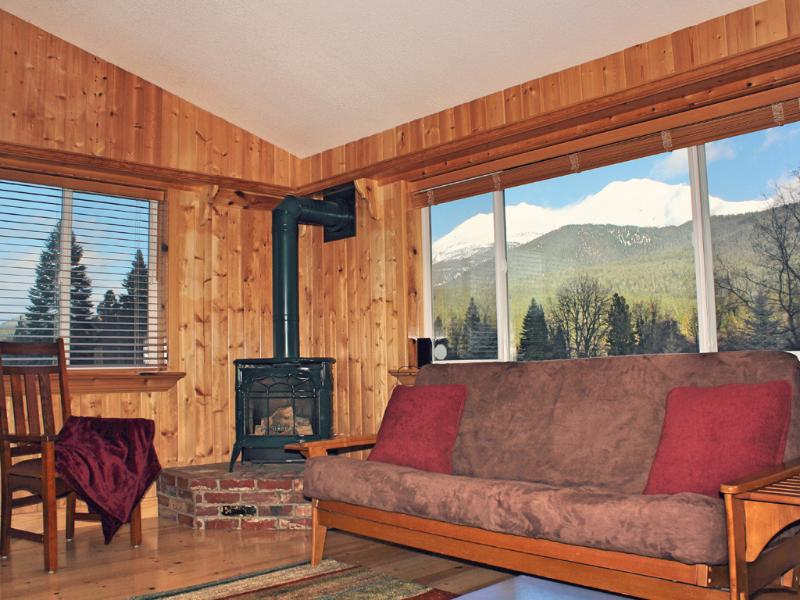 Mountain view from living room and fireplace propane stove