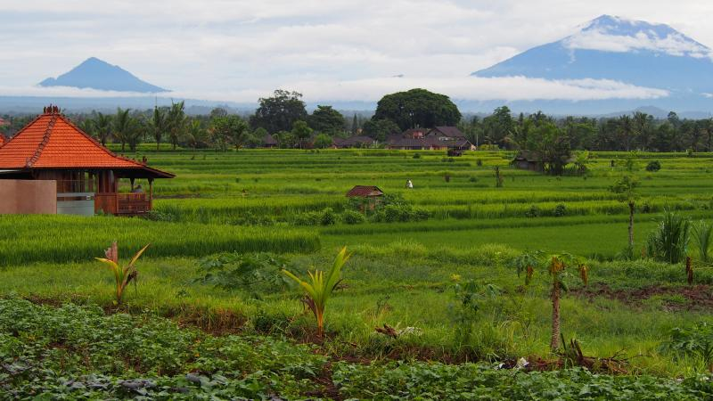 Walking track to the villa and Mt. Agung.