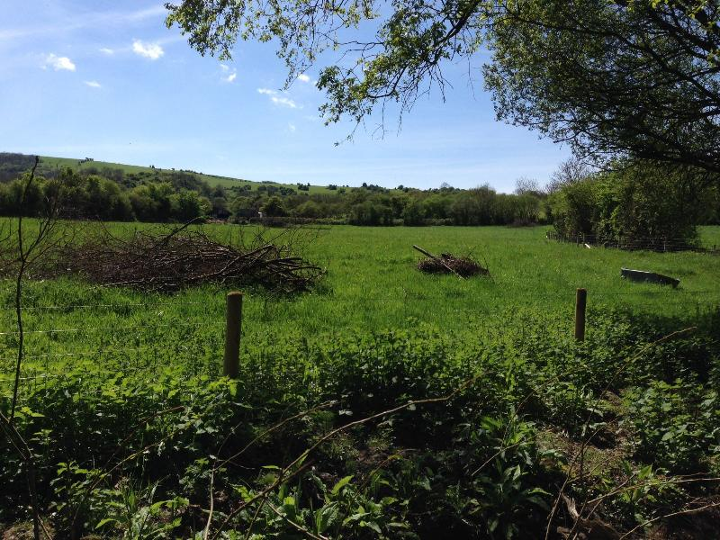 Cottage has a small wood at the end of the village with views to okeford hill