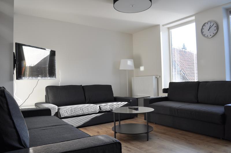 sala de estar, con asientos para 10. Dos sofás son sofás cama.