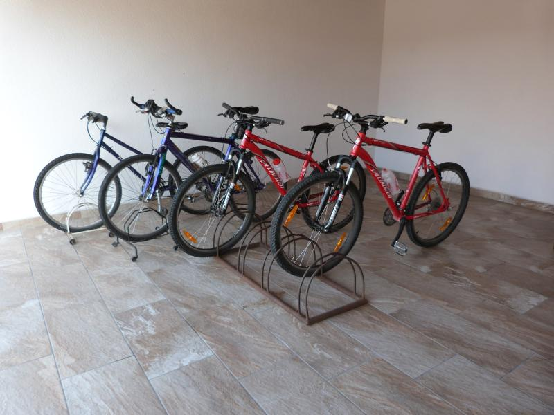 Mountain Bike for guests