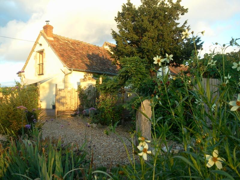 les Limornieres le Grand-Pressingy Indre-et-Loire  - Loire Valley holiday home, holiday rental in Descartes