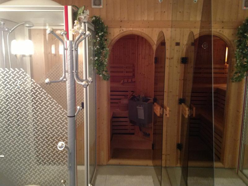 Bathroom with big shower and sauna
