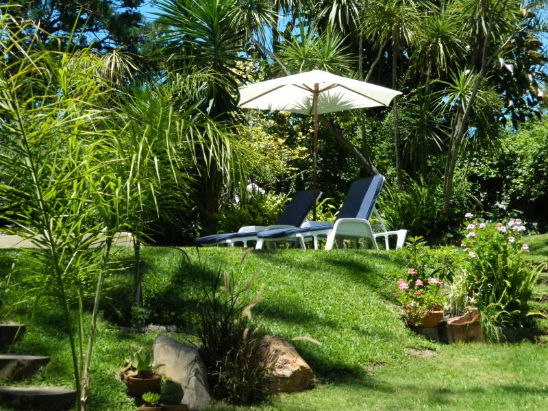 sun loungers in garden near the pool