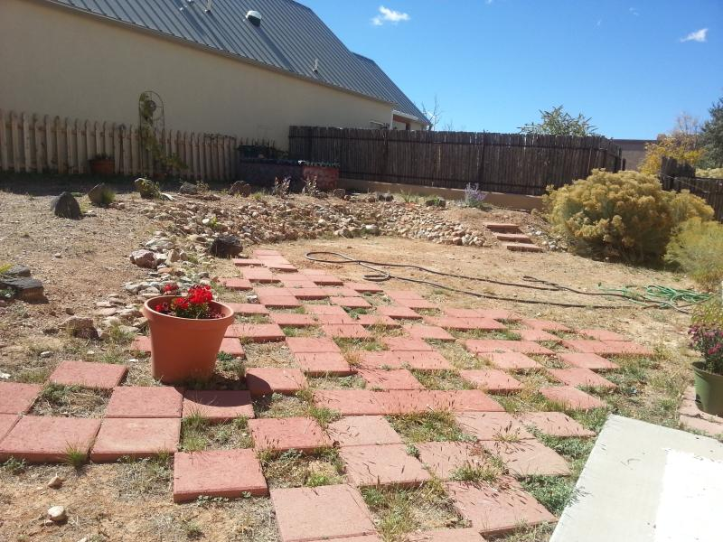 The backyard is fenced and has easy care gardens.