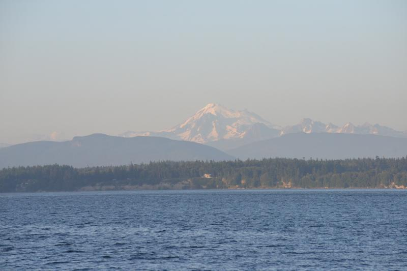 View to Mount Baker from the patio.