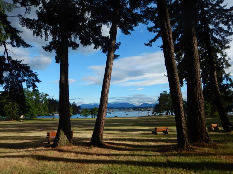 Una vista dall'isola di Newcastle, una destinazione locale per un pic-nic estivi
