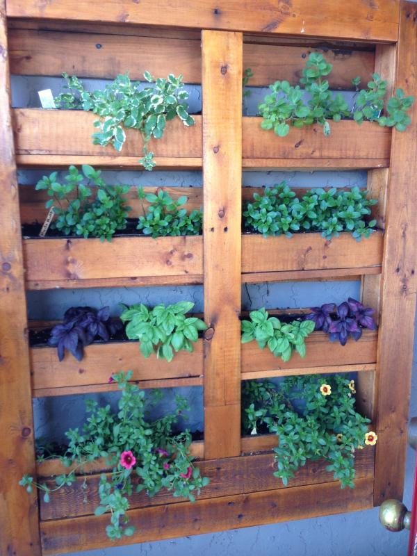 Plantador de hierba para los huéspedes de casa de campo!